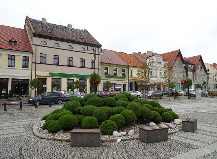 kamienice rynek Pleszew ciekawostki
